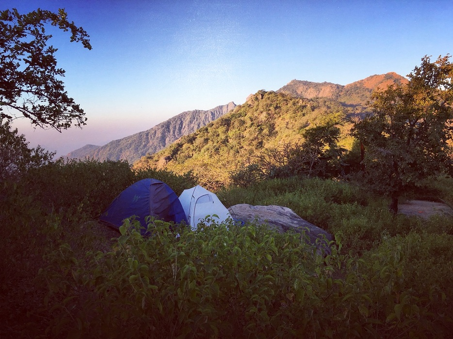 Camping in jungle at mount abu