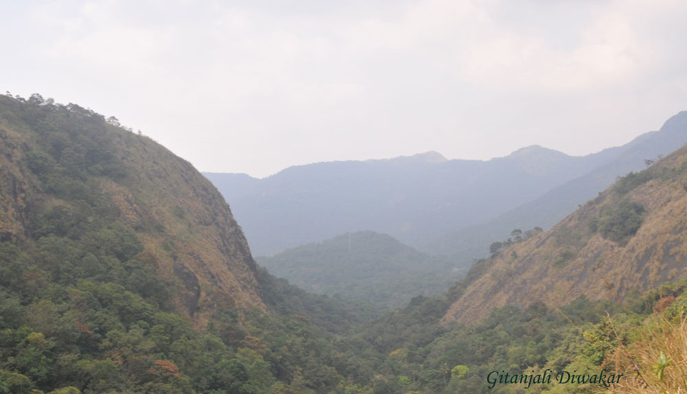 The streams that led us to the breath-taking hill top: From Kattakayam to Illickal Kallu